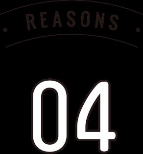 reason 04